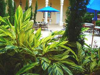 virgin island hotels small ginger plant courtyard