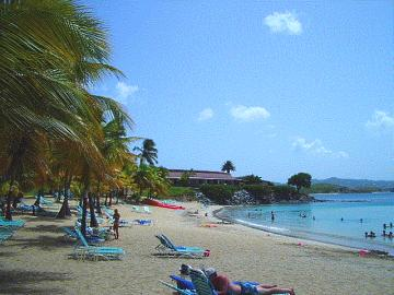 virgin island resort buccaneer beach
