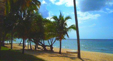 frederiksted beach 02
